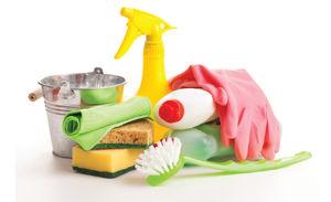 Image de la catégorie Outils de nettoyage