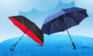 Image de la catégorie Saison de pluie